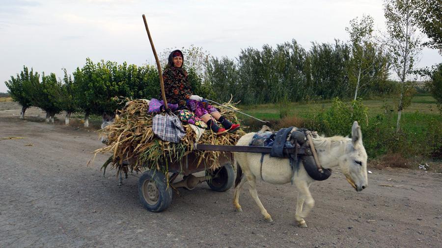 Žena na ceste v Uzbekistane